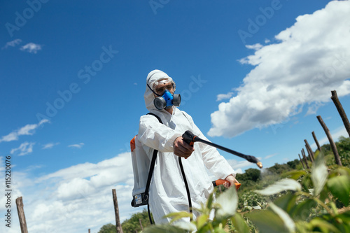 Fotografía  Man spraying toxic pesticides or insecticides on fruit growing plantation