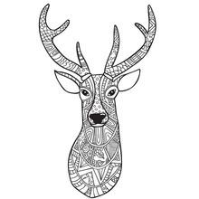 Deer. Hand-drawn Reindeer With...