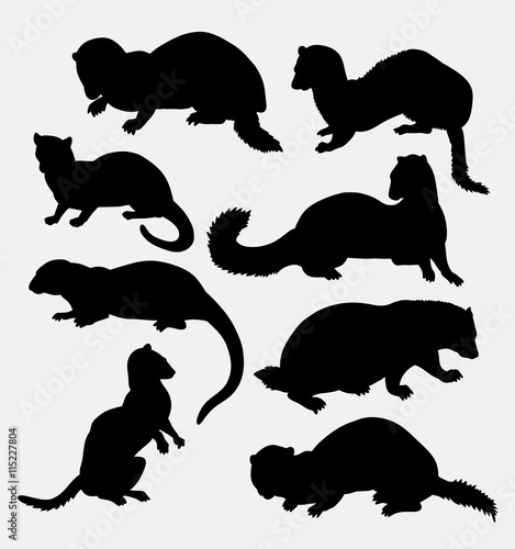 Photo  Weasel wild animal silhouette