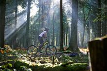 Female Mountain Biker Cycling Through Sunbeam Lit Forest Of Dean, Bristol, UK