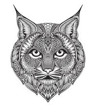 Hand Drawn Graphic Ornate Bobcat