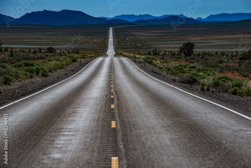 Fotografiet  Empty Road Nevada Hwy 95