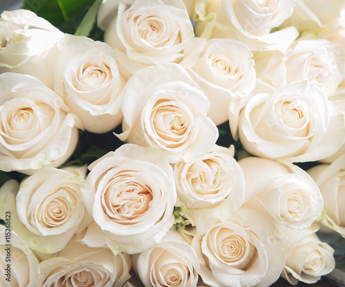 Fotobehang Roses White roses background. Nature, flowers, bouquet