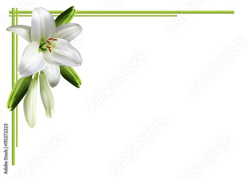 Greeting card, or wedding invitation, with white lilies. Billede på lærred