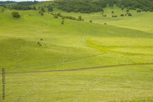 Fotobehang Rijstvelden China Inner Mongolia natural grassland