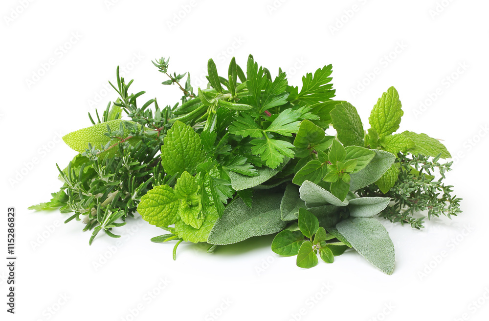Fototapety, obrazy: Fresh spices and herbs isolated