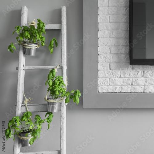 Valokuva  Creative decoration from ladder