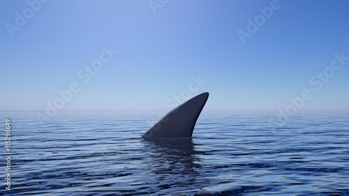 Fotografia 3D rendering of shark fin above water, with blue sky background.