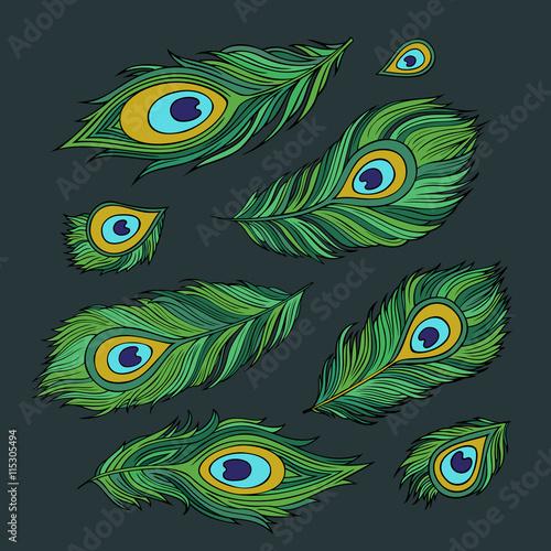 Foto op Aluminium Pauw Peacock feathers vector abstract set