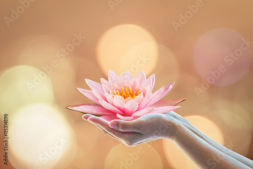 Poster Lotus flower Vesak day, Buddhist lent day, Buddha's birthday worshipping concept with woman's hands holding water Lilly or lotus flower
