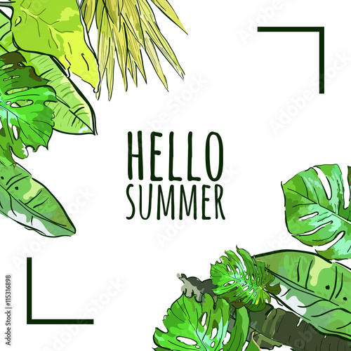 Vector Square Frame With Hand Drawn Tropical Palm Tree Leaves Summer Nature Background Green