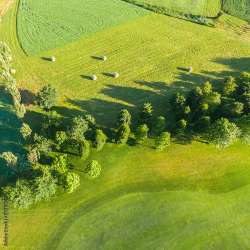 Fotografie, Obraz  campagna verde - vista aerea