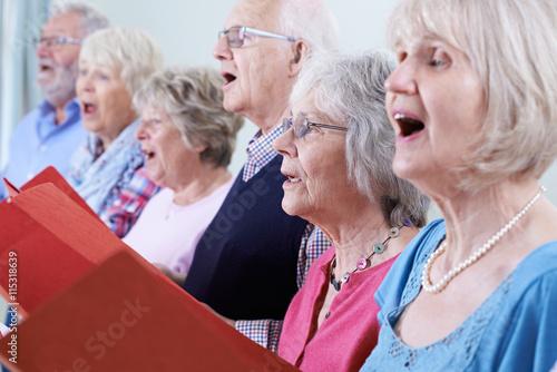 Fotografie, Obraz  Group Of Seniors Singing In Choir Together