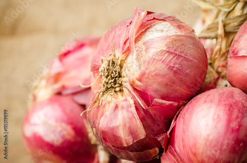 Close up of fresh shallot