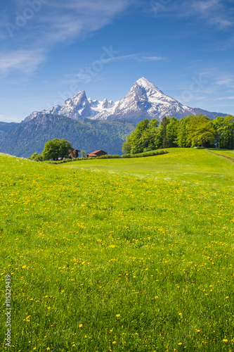 Foto op Canvas Pistache Idyllic landscape in the Alps with meadows and mountain tops