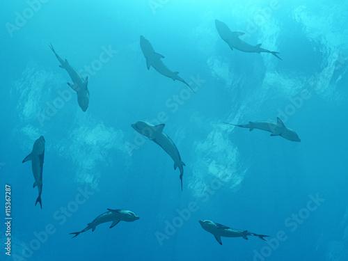 fototapeta na drzwi i meble Ansammlung von Haien