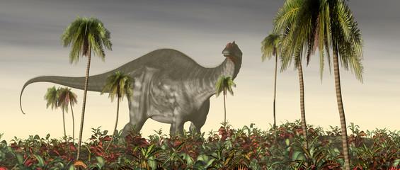 Fototapeta Do pokoju młodzieżowego Dinosaur Apatosaurus