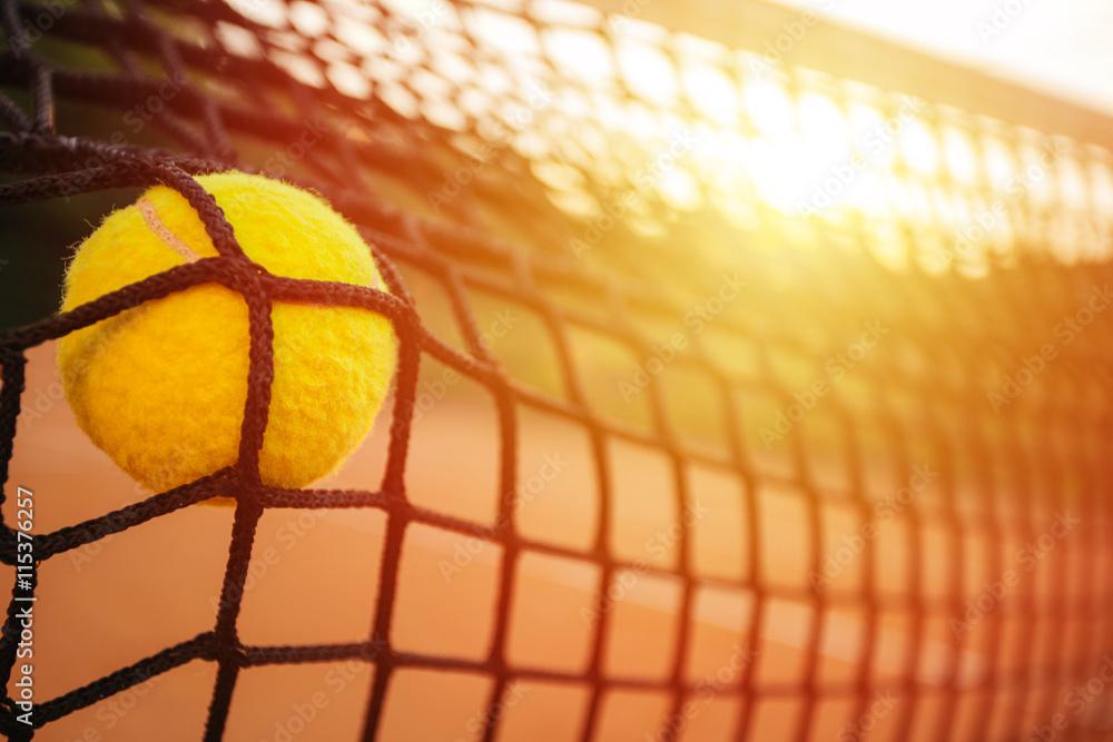 Tennis balle dans le filet Poster