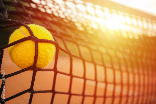 Tennis ball in net Wallpaper Mural