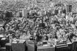 Black and White, Aerial view Tokyo residence area, cityscape background