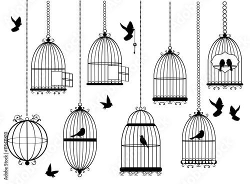 Fotografia, Obraz Vector Bird Cages