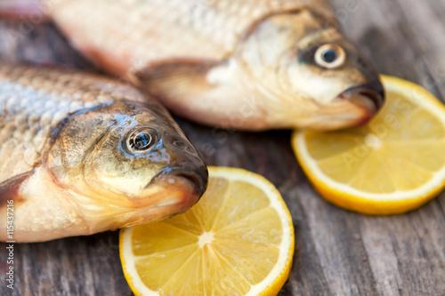 Fotografie, Obraz  Ready for fish meal