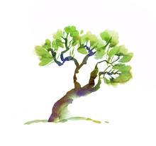 Deformed Tree Hand Drawn Image. Ink Illustration