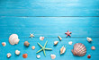 shells and starfishes on blue wooden background