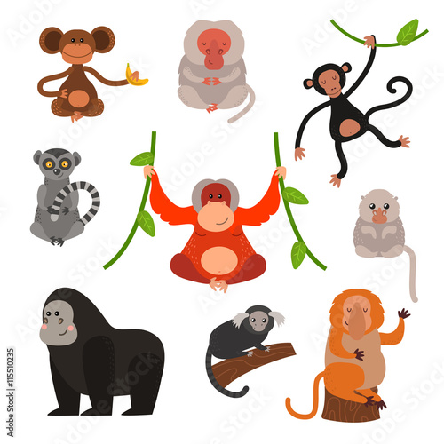 Set Of Cartoon Monkeys Vector Illustration Monkey Collection And Jungle Monkey Big Set Monkey Cute Types And Cute Primate Monkey Monkey Zoo Jumping Chimpanzee Mammal Buy This Stock Vector And Explore