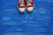 Red female shoes on a blue background