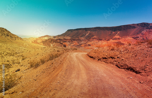 Staande foto Droogte The road in desert in summer time, Southern Nevada, USA