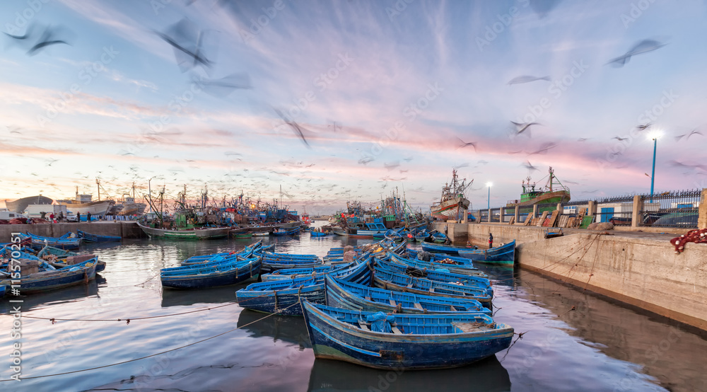 Fototapeta Morocco waterfront at sunset with motion blur of seagulls flying over blue boats