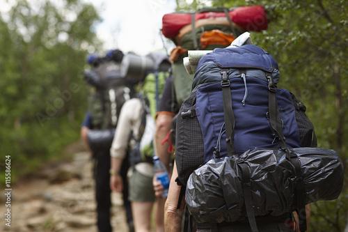 Sweden, Jamtland, People hiking with backpacks Poster