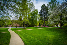 Walkway And Spring Colors At J...