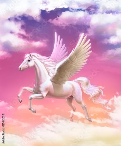 Obraz na płótnie Pegasus