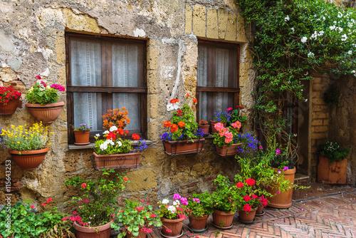 kwiat-wypelnial-ulicy-stary-wloski-miasto-w-tuscany