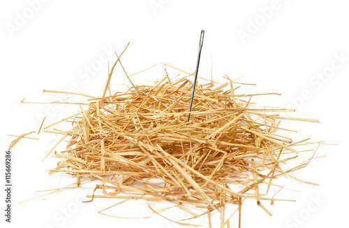 Fotografie, Tablou Closeup of a needle in haystack