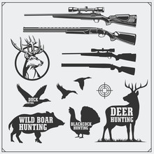 Vector Set Of Hunting Objects, Label And Design Elements. Weapons, Wild Boar, Deer, Turkey And Duck.