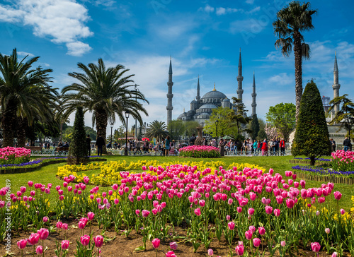 Leinwand Poster  Istanbul the capital of Turkey, eastern tourist city.