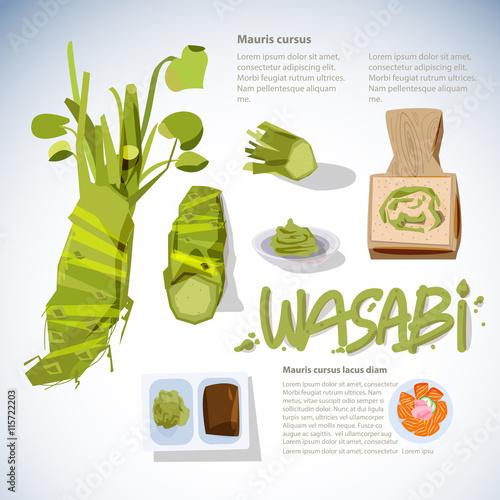 Wallpaper Mural wasabi root or plant set