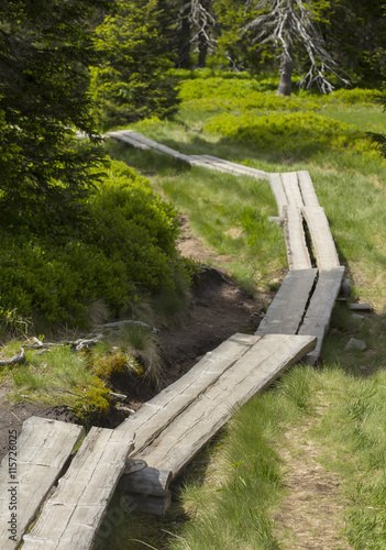 In de dag Kanaal Wooden board way leading somewhere