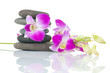 Orchid and spa-stones on white background