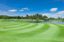 Land Scape Wide Green Lawns An...