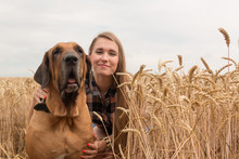 Happy Young Woman With Dog In ...