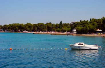 Fototapeta na wymiar Beach with pines in Vodice, Croatia.