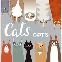 Funny Cartoon Cats Collection