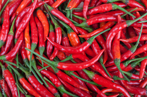 Wall Murals Hot chili peppers red chili or chilli cayenne pepper