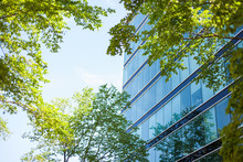 Modern Glass Facade High-rise Office Building In An Environmentally Friendly City District With Lush Green Trees