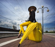 Young girl sitting on a yellow suitcase and waiting for a train