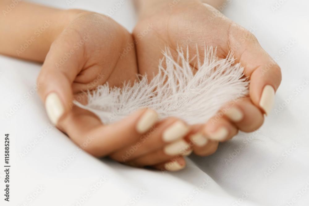 Fototapeta Closeup Of Beautiful Woman Hands Holding White Feather